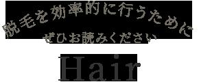 脱毛を効率的に行うためにぜひお読みください Hair